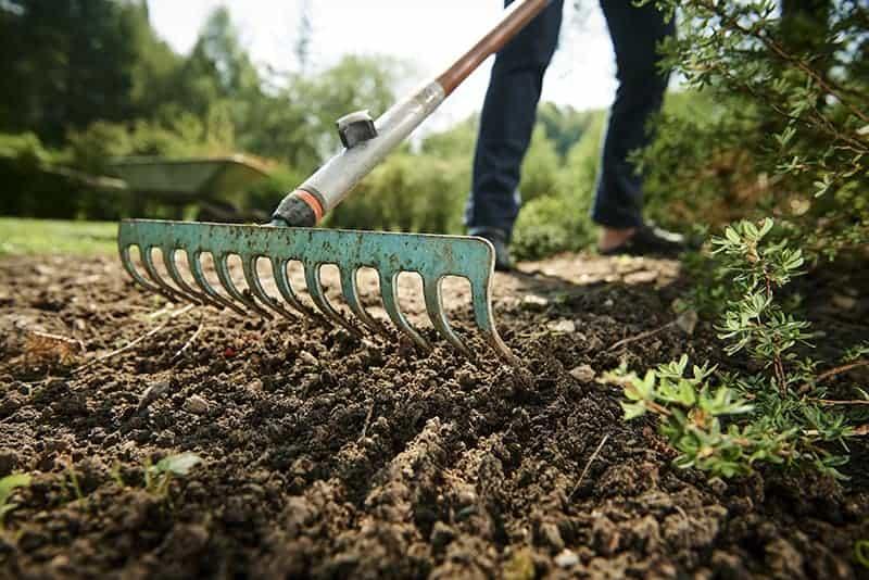 garden rake pictures