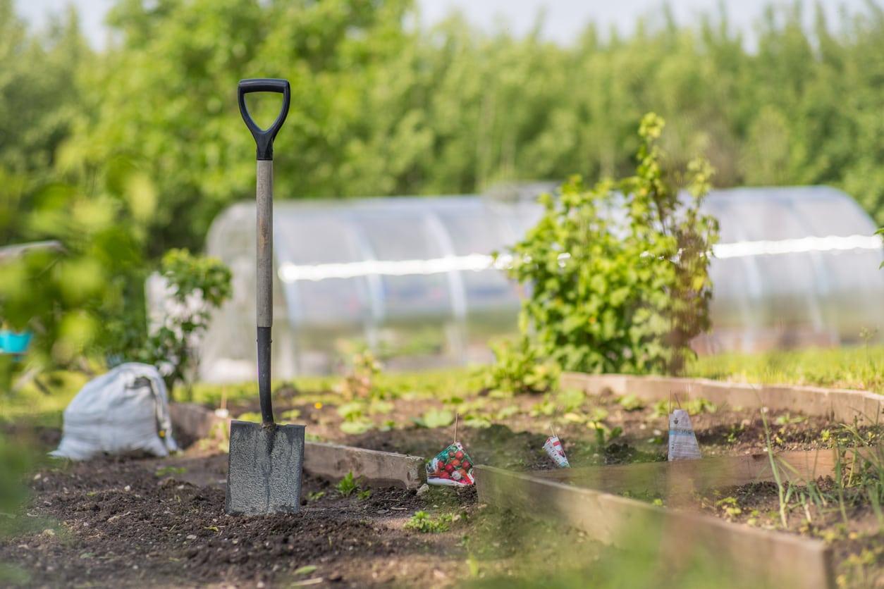 garden spade tools
